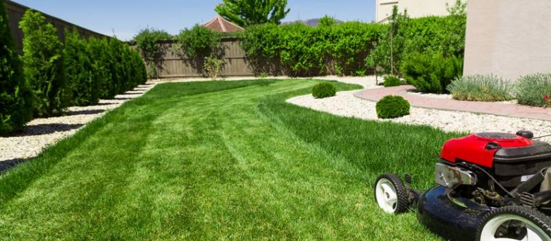 63556896 – lawn mower on green lawn